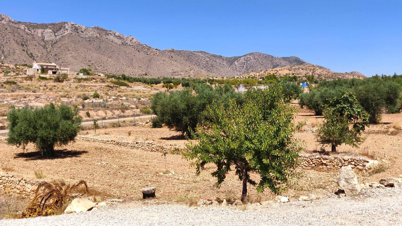Chalet independiente en Hondon De Las Nieves - Reventa ?> - Van Dam Estates